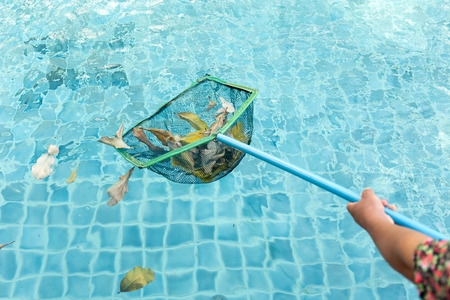 Cleaning Leaves from Swimming Pool