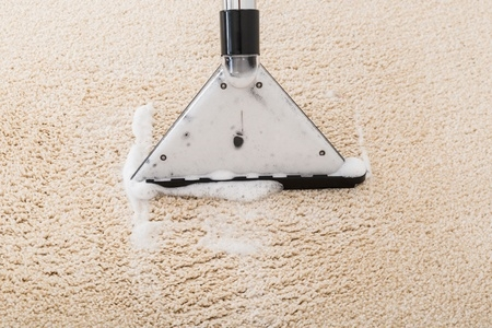 Dry Clean or Shampoo the carpet